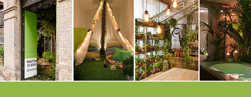 greenery appartement